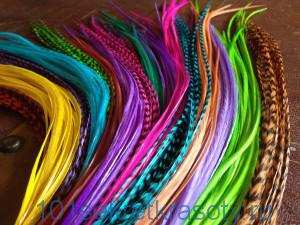 feather-hair-extensions-wholesale-suppliers